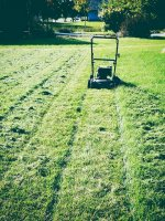 koszenie trawy kosiarką rotacyjną